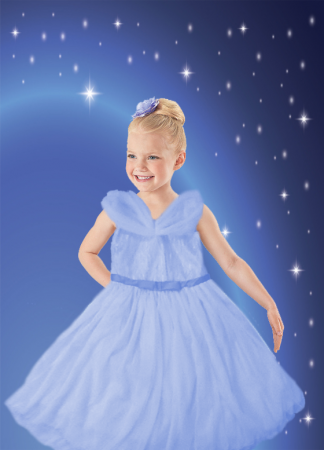 Blue Rose Princess Dress