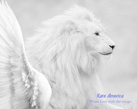White Lion with the wings and have blue eyes